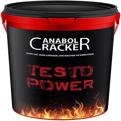 Testo Power, Whey Protein Creatin Shake, 2600g Dose, Himbeer - Frucht oder Cappuccino Geschmack, Eiweißpulver Muskelaufbau (Frucht - Himbeere)