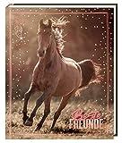 Freundebuch - I LOVE HORSES - Beste Freunde: (Foto) (Alben & Geschenke für Kinder)