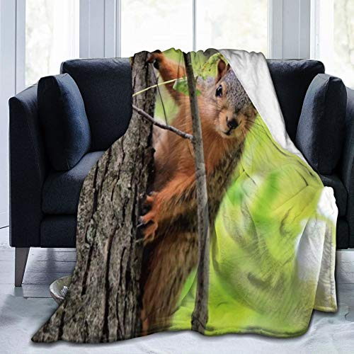 Bernice Winifred Curious Squirrel Ultra-Soft Micro Fleece Blanket Fabricada en Franela Anti-Pilling, más cómoda y Abrigada.80x60