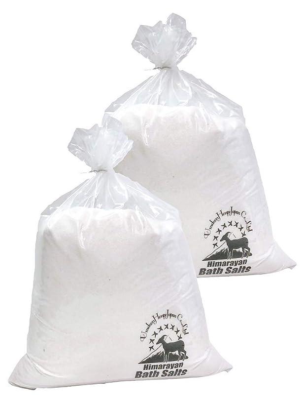 ラケットガイド装置ヒマラヤ岩塩 バスソルト ホワイト あら塩 20kg