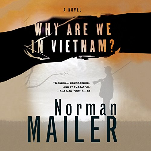 『Why Are We in Vietnam?』のカバーアート