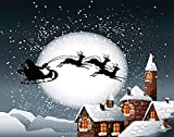 MQPPE Cartoon 5D DIY Diamond Painting Kits, Christmas of Santa and His Reindeer on Full Moon Snowy Town Full Drill Painting Arts Set Craft Canvas for Home Wall Decor Adults Kids, 16' x 20'