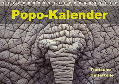 Popo-Kalender (Tischkalender 2021 DIN A5 quer)