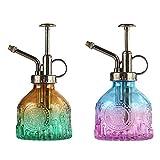 Yemiany Botella de spray de riego de vidrio en relieve de 2 piezas con bomba superior de boquilla de presión manual,planta sellada a prueba de fugas para plantas de jardín (205ml,cabeza de bronce)
