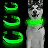 Collare LED per cani con micro USB ricaricabile a 3 fili riflettenti che si illuminano di sicurezza regolabile in morbido nylon per cani di taglia piccola, media e grande (S, verde)