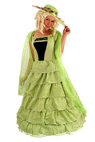 DRESS ME UP - KOLONIAL Kostüm Kleid Barock BIEDERMEIER Südstaaten Gr 46