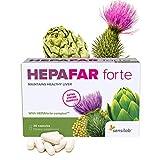 Hepafar Forte Mariendistel Detox Kur - 120 Hochdosiert Kapseln (4x30) - Artischocke, Vitamin E, Phospholipide - hohe Bioverfügbarkeit - Kapseln zur Erhaltung einer normal Leberfunktion