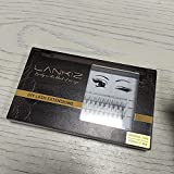 Home PRO DIY Individual Eyelashes Pack, LANKIZ Cluster Lashes for DIY Lash Extension at Home, C Curl 0.07 Mix 20D False Mink Eyelashes Individual Lashes