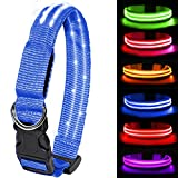 MELERIO LED Leuchthalsband für Hunde USB Aufladbar LED Hundehalsband Stück hundehalsband Leuchtend Wiederaufladbares und Längenverstellbareres mit DREI Beleuchtungsmodi