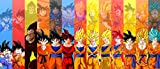 Desconocido Poster Goku Dragon Ball Todas Sus Fases All Stages Ultra Instict Alta RESOLUCION (100,...
