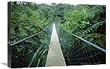Global Gallery Puente Colgante en el Parque Nacional ABEL Tasman, Nueva Zelanda, Arte en Lienzo, 61 x 40,6 cm