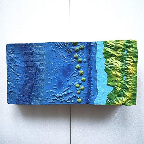 GEEFSU-Geographie-Unterrichtsmodell Das Hauptsächlich Zum Unterrichten Der Meeresbodentopographie Im Geographieunterricht Verwendet Wird