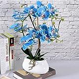 Artificiale piantina Finta con Vaso Fiori artificiali dell'orchidea con vaso Pianta finta con pentola Phalaenopsis Bonsai Piscina per soggiorno Disposizioni Decorazione Artificiali Bonsai Arredamento