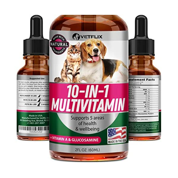 VETFLIX Pet Vitamins 10 in 1 – Made in USA – Glucosamine For Dogs &...
