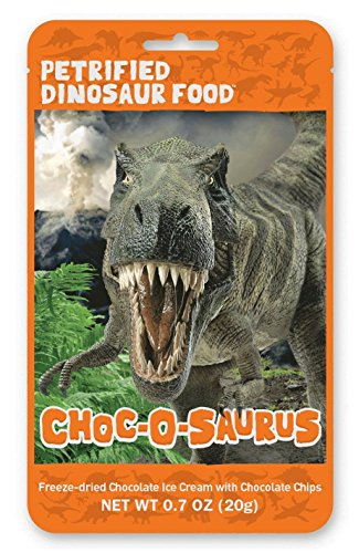 Cho-O-Saurus Petrified Dinosaur Food Freeze Dried Chocolate Chip Ice Cream, 1 Count, 0.7 Ounce