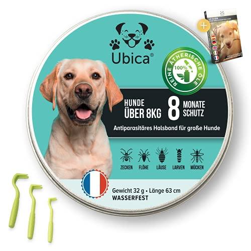Ubica® Flohhalsband Hunde - Zeckenhalsband für Hunde - Flohmittel Hund (> 8kg) - Formel mit ätherischen Ölen (Zitronengras) - Gefahrlos und 100% WASSERDICHT - 3 Zeckenklammern und EBOOK Gratis.