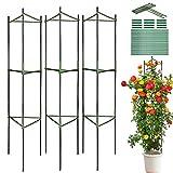 LIBRNTY 3 PCS Garden Supporto Piante Rampicanti,Sostegno per Piante,Acciaio con Rivestimen...