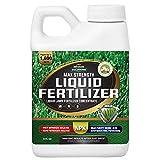 10. PetraTools Liquid Fertilizer, 16-4-8 Lawn Fertilizer, Liquid Lawn Fertilizer Concentrate & Grass Fertilizer for All Grass Types, Liquid Lawn NPK with Nitrogen Fertilizer Lawn Food Max Strength (8 Oz)