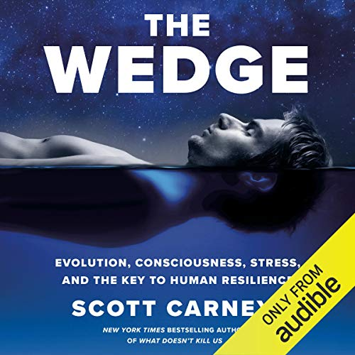 The Wedge cover art