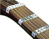 FRETNOTES Aufkleber für E-gitarre oder Akustikgitarre (6-Saiten Rechtshändig) Griffbrett Notizen...