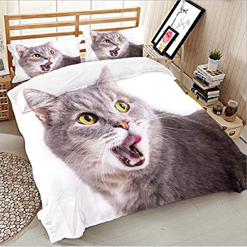 Dvvseso 3 Pieces Bedding Set Double size Duvet Cover with 2 Non-Iron Zippered Pillow Cases, Microfiber Quilt Fabric Duvet Cover Easy Care Anti-Allergic Soft & Smooth, Animal gray cat200 x 200 cm -Ha