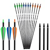 Deerseeker Pure Carbon Arrow 31' Hunting Arrows Practice Target Arrows for Compound Bows Recurve Bow Longbow with Removable Tips Spine 300 (12 Pack