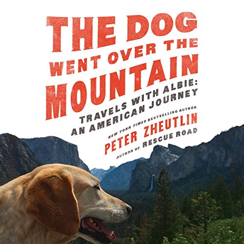 The Dog Went Over the Mountain audiobook cover art