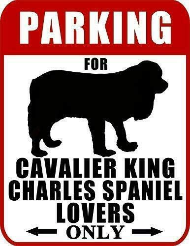 2 Count Top Shelf Novelties Parking for Cavalier King Charles Spaniel Lovers Only Dog Sign SP2027