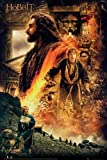 empireposter The Hobbit - Desolation of Smaug - Fire