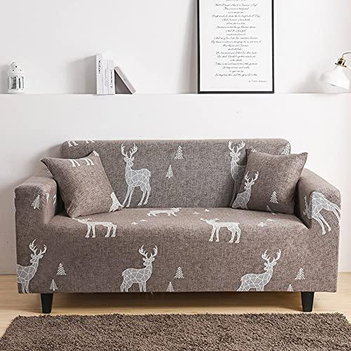 ASCV Funda de sofá Estampada elástica Estiramiento Apretado Envoltura Todo Incluido Fundas de sofá para Sala de Estar Funda de sofá Silla Funda de sofá A2 2 plazas