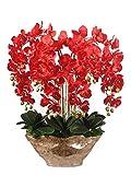 YQCH 10 Cabezas orquídeas Rojas Gran Flor Artificial con jarrón de Resina Dorada Phalaenopsis Artificial Falso Flower Set para Sala de Estar Decoración de Mesa de Comedor