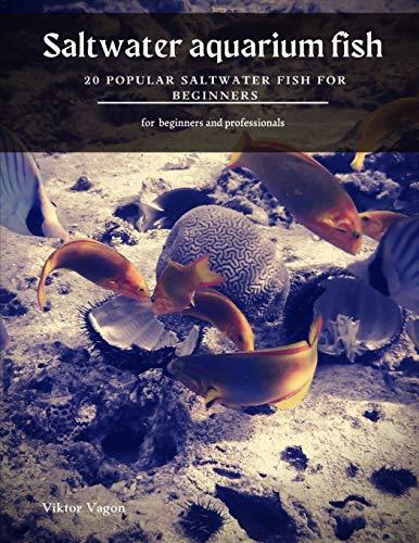 Saltwater aquarium fish: 20 Popular Saltwater Fish for Beginners