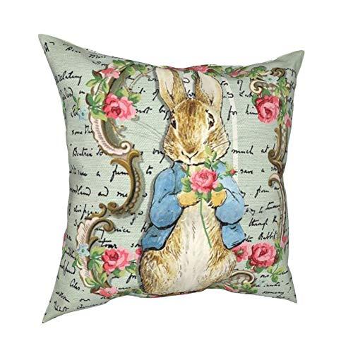 The New Adventures Youth Comics Pe-ter Rabbit Beatrix Potter - Funda de almohada con cremallera, diseño de conejo, 45,7 x 45,7 cm