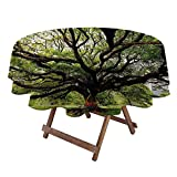 Round Table Cove Nature Christmas Tablecloth Round The Largest Monkey Pod Tree in Thailand Eastern Green Big Branches Growth Eco Photo 50' Diameter Green Brown