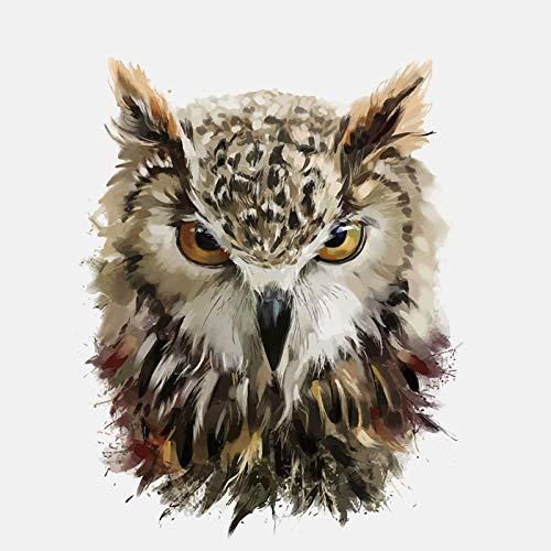 RUIRUI Rui Ruisharp Eyes Of The Owl Pvc Car Sticker 12.4Cm*15.4Cm