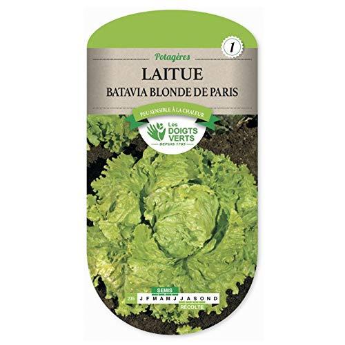 Les doigts verts Semence Laitue Batavia Blonde de Paris