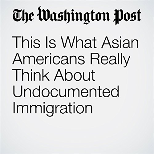 This Is What Asian Americans Really Think About Undocumented Immigration copertina