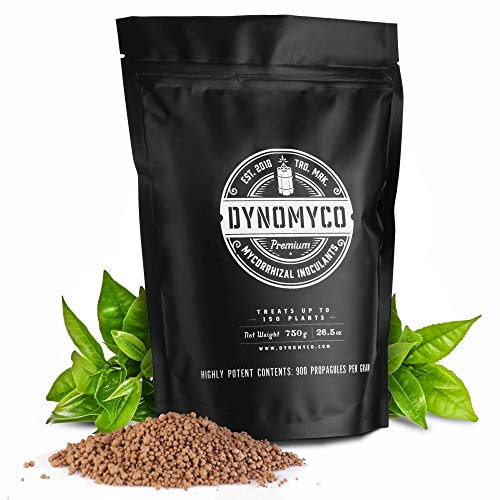 Mycorrhizal Inoculant by Dynomyco