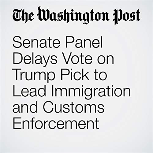 『Senate Panel Delays Vote on Trump Pick to Lead Immigration and Customs Enforcement』のカバーアート