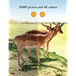 APEMAN Wildlife Camera Photo Trap 30MP 4K with Infrared Night Vision up to 65ft/20m IP66 Spray Waterproof for Outdoor Nature, Garden, Home Security Surveillance