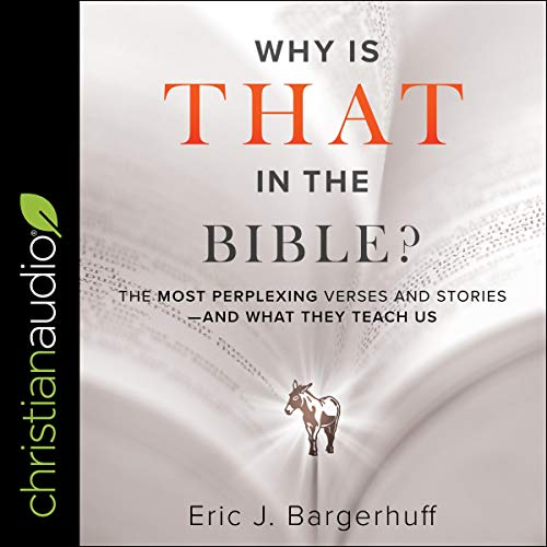 Why Is That in the Bible?: The Most Perplexing Verses and Stories - and What They Teach Us