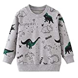 Boy Sweatshirts Dinosaur Pullover Cotton Casual Crewneck Winter Long Sleeve Tops Sweater Shirts Size 3T