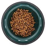 BOLORAMO Ciotola per Cani e Gatti, mangiatoia per Animali Domestici Antiscivolo anticorrosione con Stampa per Negozio di Animali(Green)