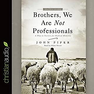 Brothers, We Are Not Professionals audiobook cover art