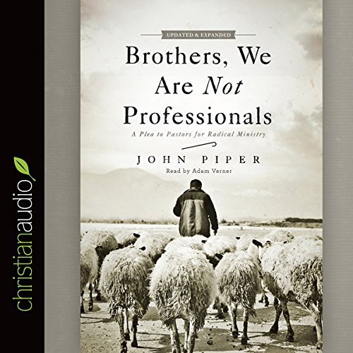 Brothers, We Are Not Professionals cover art