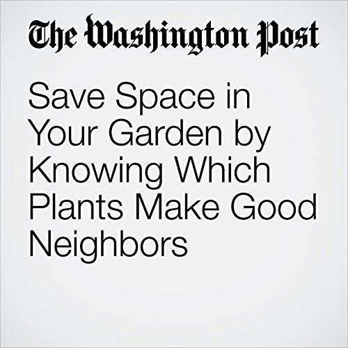 Save Space in Your Garden by Knowing Which Plants Make Good Neighbors cover art