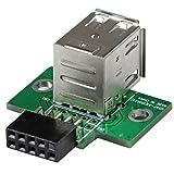 StarTech.com 2 Port USB Motherboard Header Adapter - USB adapter - USB (F) to 10 pin USB header (F) - USBMBADAPT2