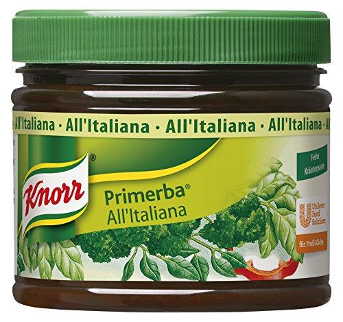 Knorr Primerba Kräuter in Öl All'Italiana, 1er Pack (1 x 340 g)