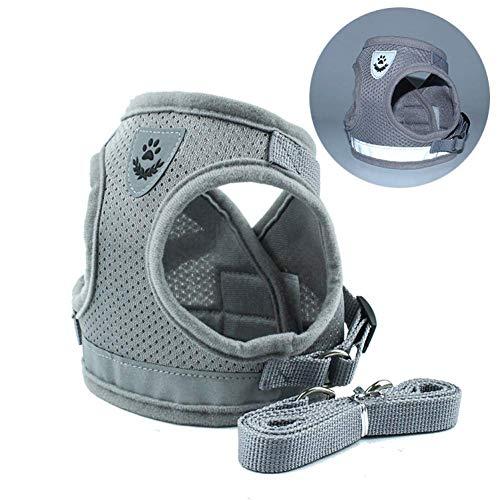 CCJW Hundegeschirr Sommer-Haustier-Adjustable Warnweste Blei-Leine-Welpen-Polyester Mesh Small Medium kshu