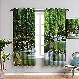 Rainforest - Cortinas opacas de 160 cm de largo, arroyo de montaña en un bosque tropical, follaje, campo, paisaje, escena insonorizada, color verde y marrón, 42 x 63 pulgadas